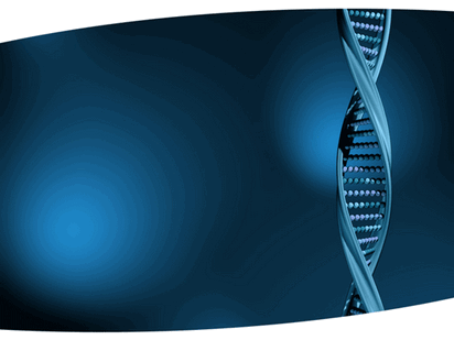 Dna Structure Design Template
